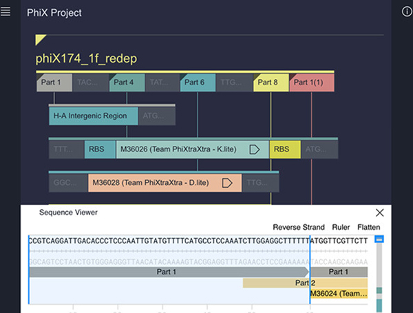 Genetic Constructor: An Online DNA Design Platform.