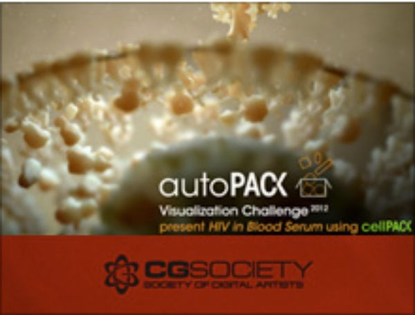 autoPack Visualization Challenge 2013