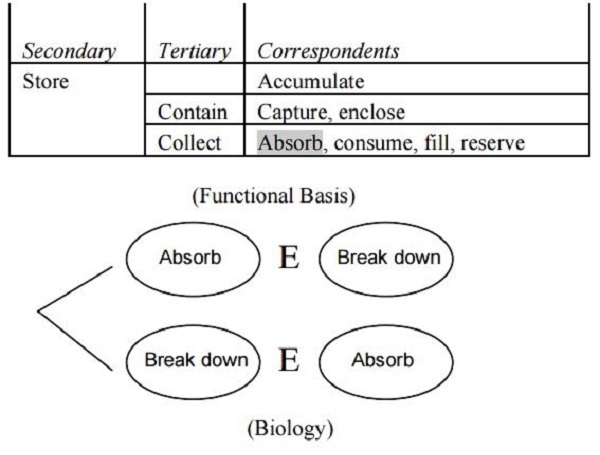 Translating Terms of the Functional Basis into Biologically Meaningful Keywords